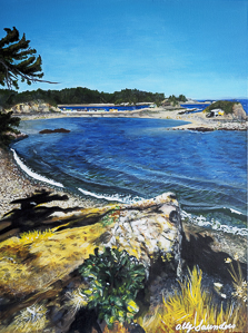 ally art, nanaimo art, satir, nanaimo, local art, , satir art,